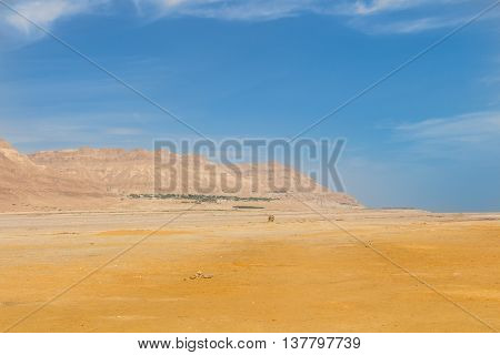 Oasis landscape with the Mountains and the desert in Israel