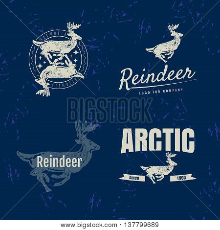 Vector colorful set with reindeer. The reindeer as main element of logotypes on blue background. Engraves vector design graphic element emblem logo sign identity logotype