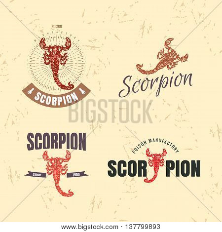 Vector colorful set with scorpion. The scorpion as main element of logotypes on beige background. Engraves vector design graphic element emblem logo sign identity logotype