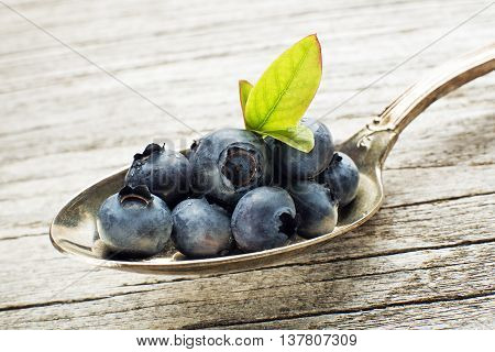 Juicy and fresh blueberries with green leaves on spoon close up