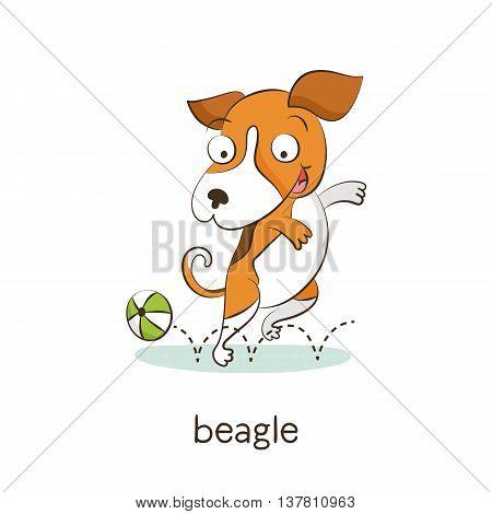 Beagle. Dog Character Isolated On White
