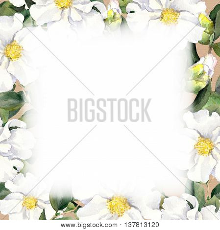 Seamless floral wallpaper with white flowers magnolia, peonies. Watercolour
