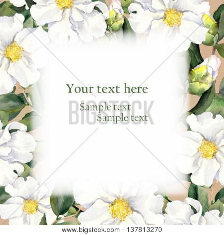 Retro postcard with floral frame, white flowers. Vintage watercolour
