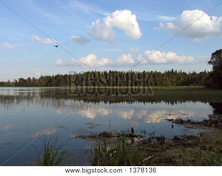 The Summer Day On Lake Valdaiskoye.