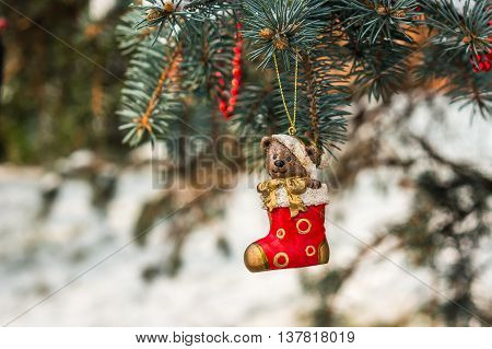 Teddy Bear And Red Sock, Christmas Concept