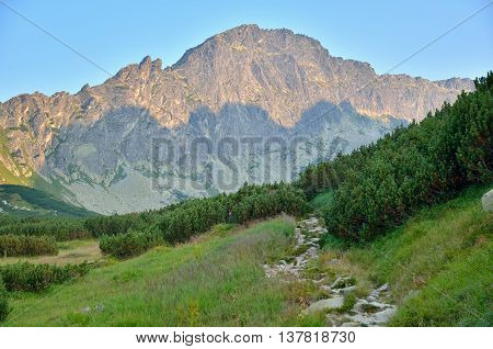 Summer mountain landscape. Mountain trail and peaks in sunny day.