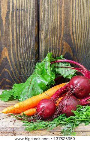 Young organic beetroots and carrots with leaves on a wooden table. Vegetables from the garden. Copy space