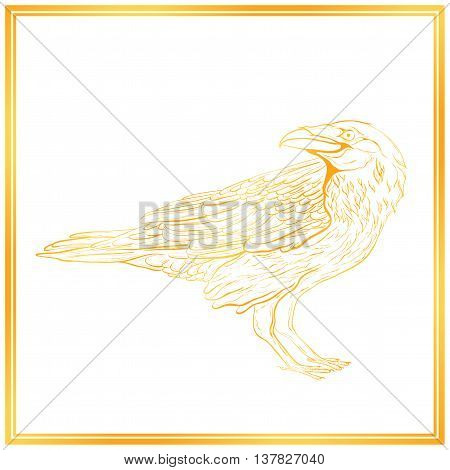 Highly detailed gold raven sketch on white background