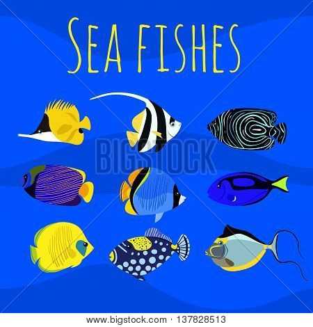 Vector set of sea exotic ocean tropical colorful fishes.