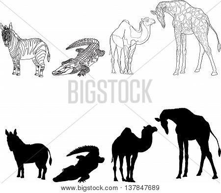 illustration with the image of zebra, giraffe, crocodile and camel, made contours and silhouettes. black and white. Vector