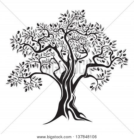 Olive black and white tree with olives