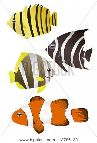 Vector illustration of stripy tropical fishes