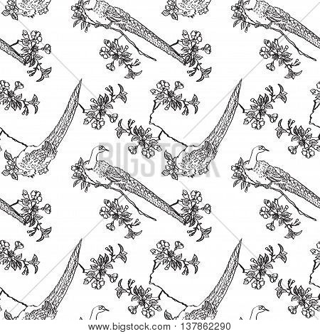 Japanese traditonal seamless pattern with outline black birds and flowers of cherry on white background. Vector design for textile wallpaper fabric packaging coloring covers and others
