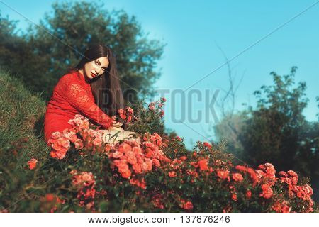 Beautiful woman sitting among the rose bushes in nature.
