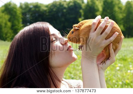 The girl kisses a home guinea pig