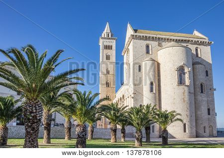 Cathedral of Trani Italy with palm trees in front
