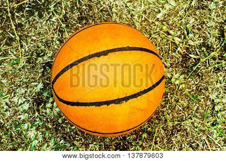 Worn ball basketball on dry grass viewed from top