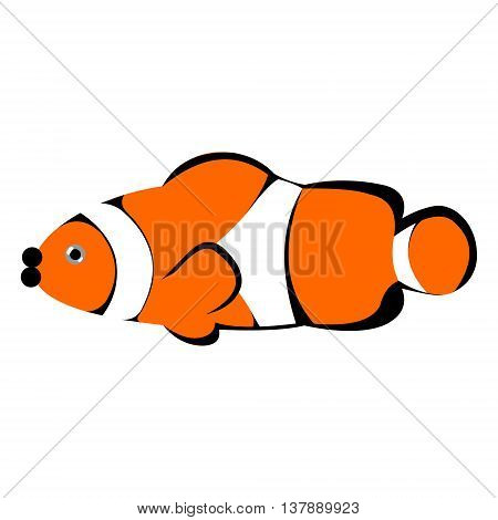 Vector illustration of orange striped clown fish isolated on the white background
