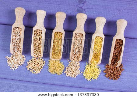 Various Groats On Wooden Spoons, Healthy Food And Nutrition