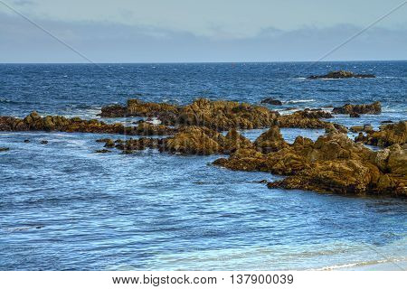 Rock breakers Asilomar State Marine Reserve California