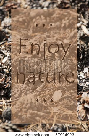 Vertical Texture Of Fir Or Pine Cone. Autumn Season Greeting Card. English Quote Enjoy Nature