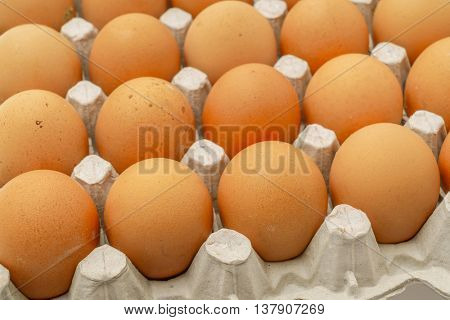 Fresh eggs in package