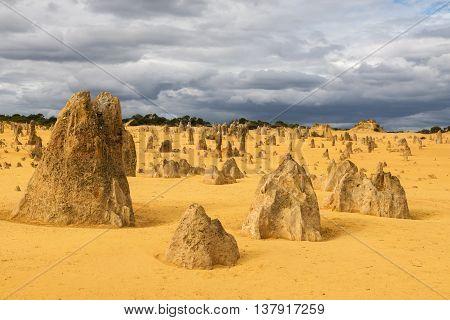 Yellow sand dunes and limestone pillars Pinnacles Desert in the Nambung National Park Western Australia.