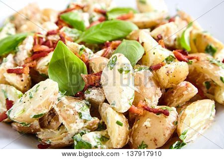 Close up of potato salad from boiled young potatoes with yoghurt and mayonnaise dressing, roasted bacon, sliced green onions and basil leaves in white plate. Fork, spoon and bunch of basil near it.