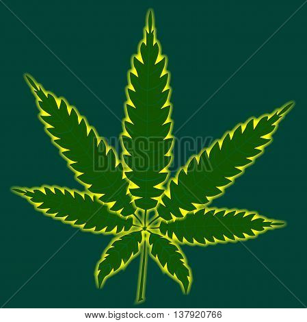 A cannabis leaf isolated over a green background.