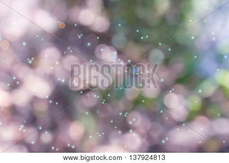 Wonderful Sweet Lens Flare And Dreamy Bokeh