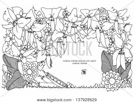 Vector illustration Zen Tangle , peas frame. Doodle flowers pattern. Coloring book anti stress for adults. Black and white.
