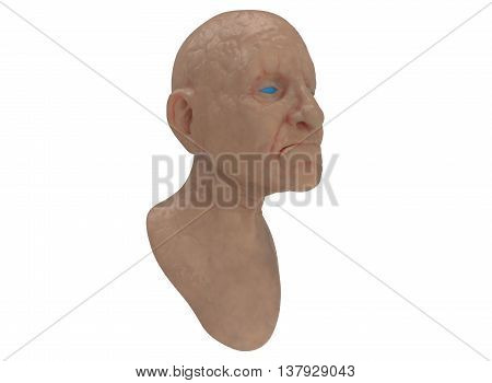 3d illustration of old man head. icon for game web. white background isolated. wrinkles statue. blue eyes.