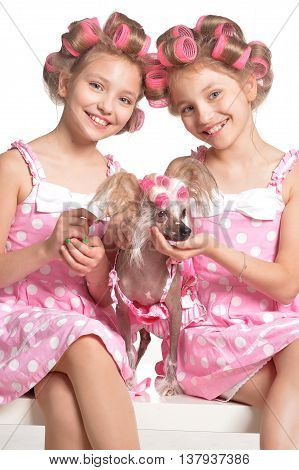 Cute  tweenie girls  in hair curlers  with dog  in studio