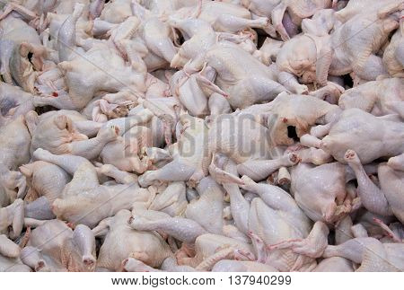 The background from the raw carcasses of chickens