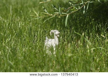 white porcelian goat in green lawn grass