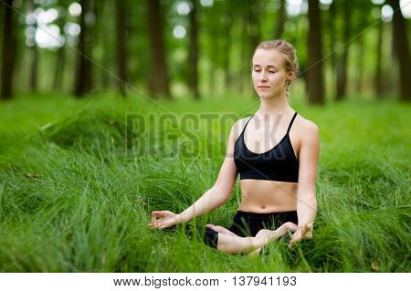 Medetation Yoga Session In Woods
