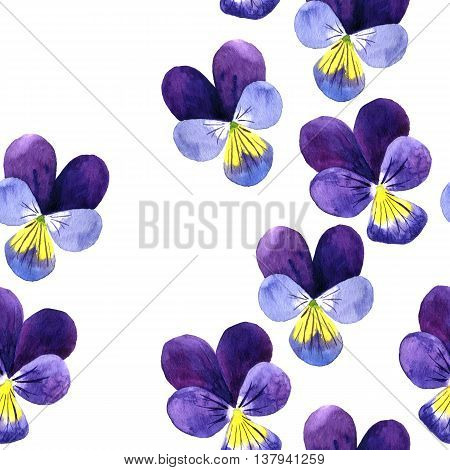 Seamless pattern with watercolor drawing violet flowers, floral ornament with pansies, painted wild plants, hand drawn illustration