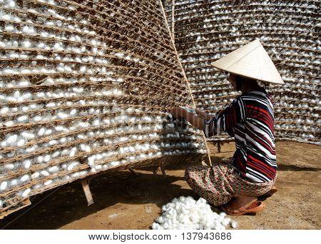 LAM DONG, VIETNAM, June 14, 2016 women, rural Lam Dong, Vietnam, raising silkworms, cocoons