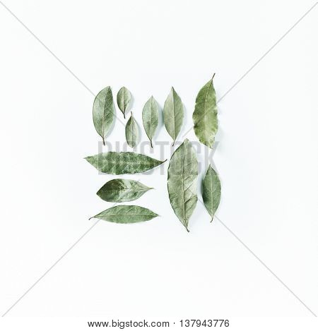 An Arrangement of Bay Leaves