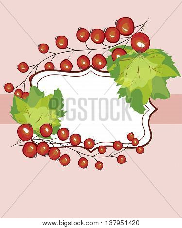 Vector hand drawn label currants. Red currant berries menu circle design recipe place text inscription frame.