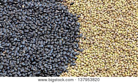Black Eyed Peas, Soy Beans
