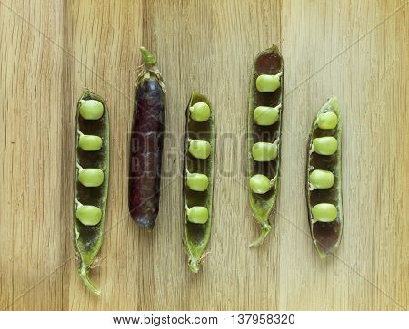 hybrid violet peas in closeup on a wooden background