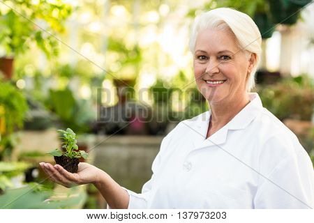 Portrait of smiling female scientist holding sapling at greenouse