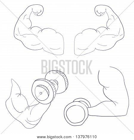 freehand cartoon strong arm flexing bicep sport