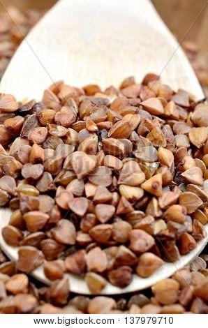 Buckwheat groats in a wooden spoon closeup
