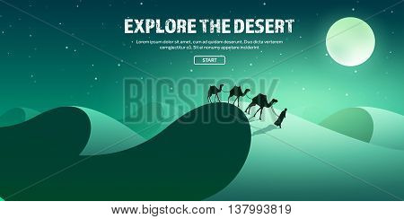 Desert trip. Extreme tourism and travelling. Back to nature. Sands.Exploring Africa. Horizont line with sky, stars.Camels.