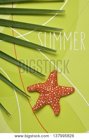 high-angle shot of a palm tree leaf, a colorful papier-mache starfish and the text summer on a green patterned background