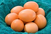 Brown Eggs In Cloth