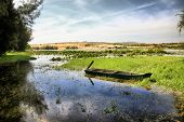 stock photo of sand lilies  - The thrown boat on lake of lotuses in Vietnam - JPG
