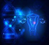 Постер, плакат: Female Reproductive Organs Ovaries And Uterus On A Blue Scientific Background With Dna Chains